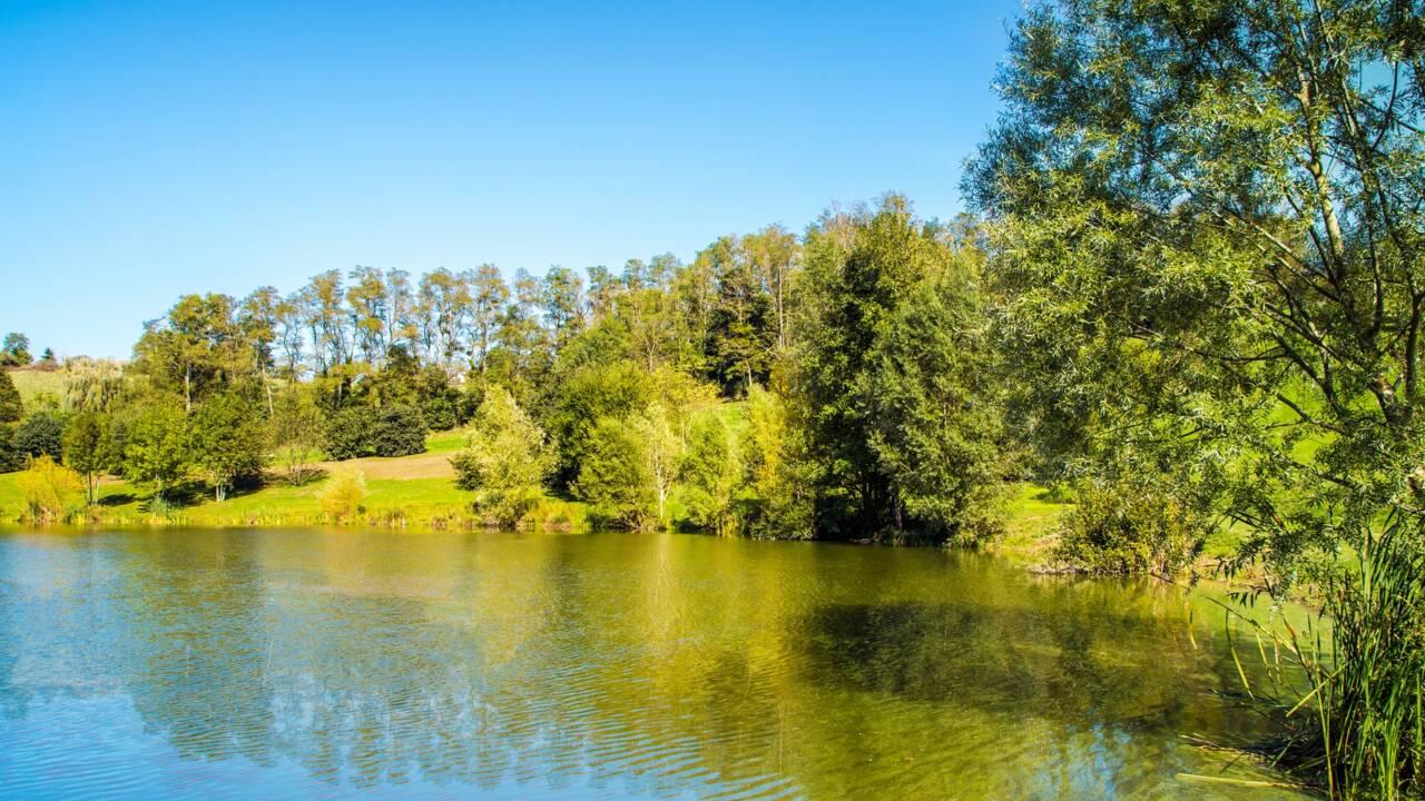 Zones naturelles d'intérêt écologique faunistique et floristique, la valorisation du patrimoine naturel