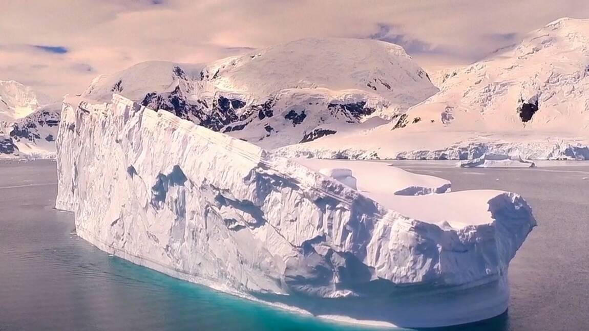Vidéo : Odyssée en Antarctique