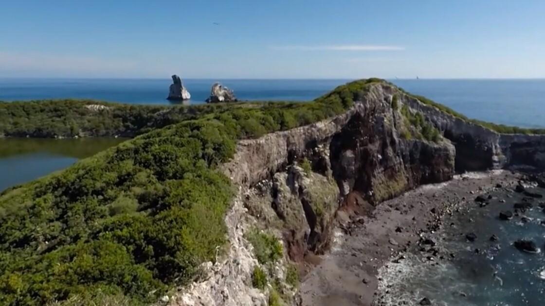 VIDÉO : Au Mexique, le paradis naturel de la Basse-Californie