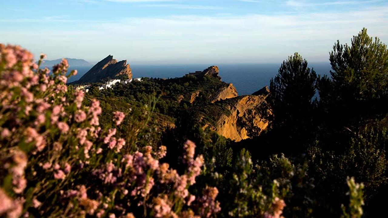 La France nature : la Provence
