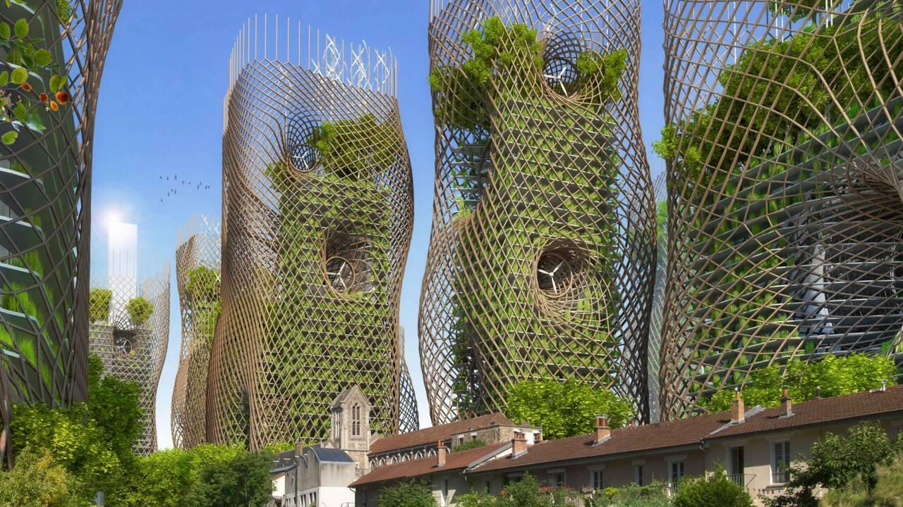 Agriculture urbaine : l'avenir de l'agriculture verticale en 5 questions