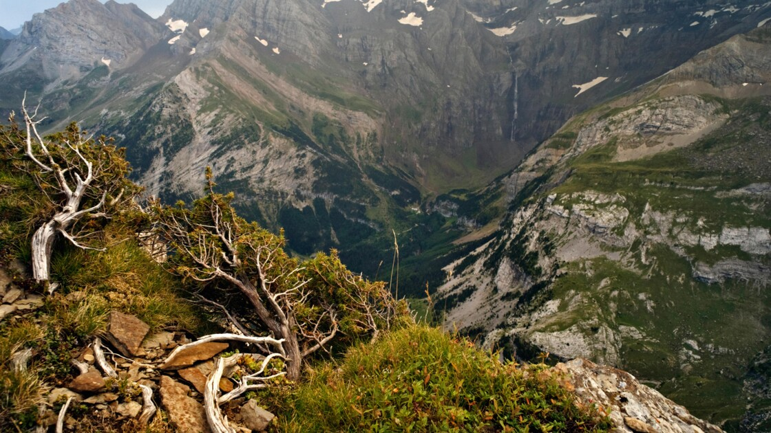 La France nature : les Pyrénées