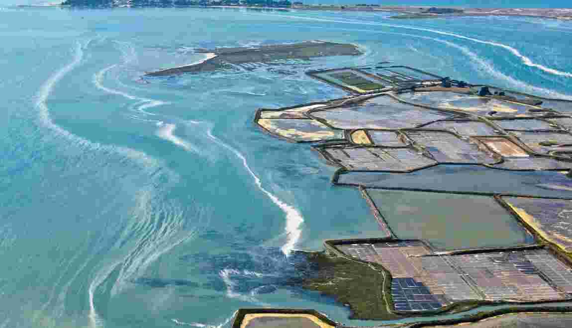 La route du sel : sur la piste de l'or blanc