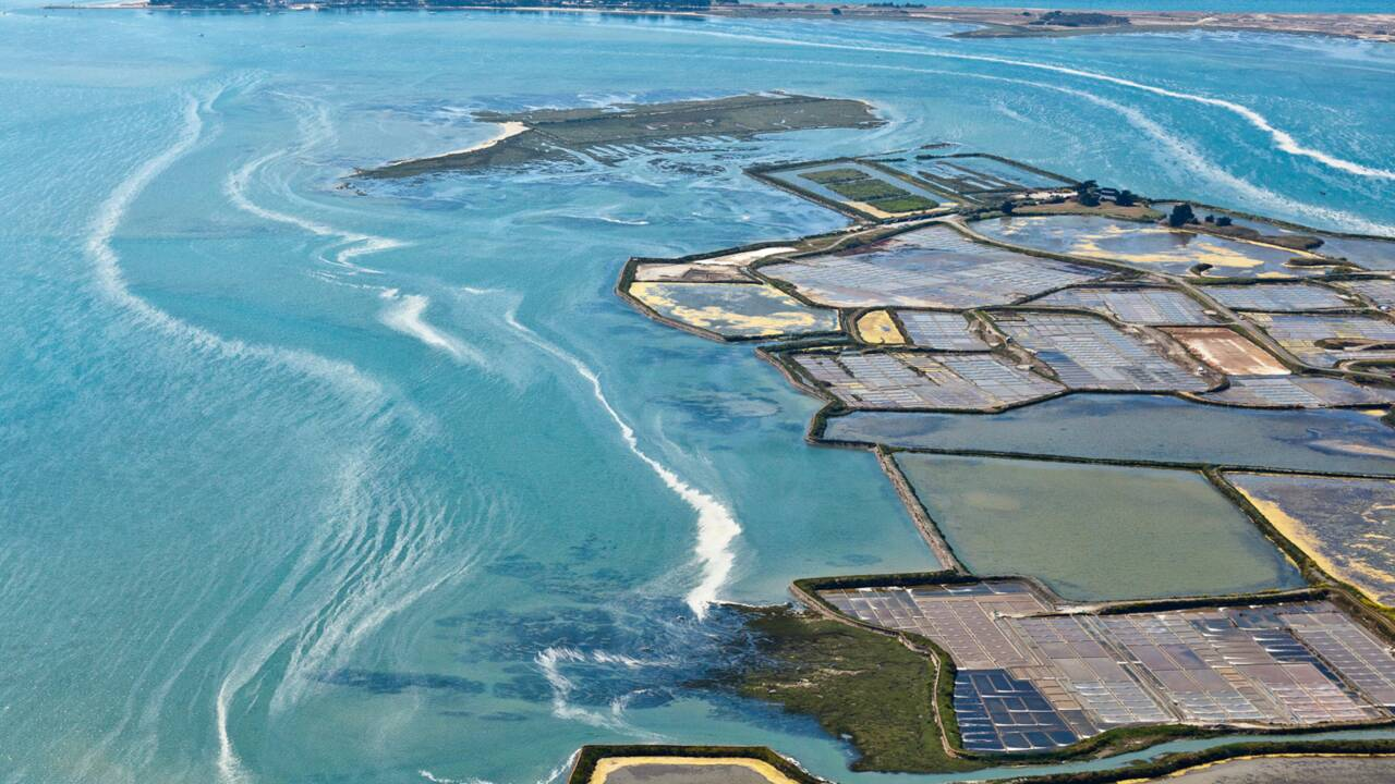La route du sel : sur la piste des marais salants de la Côte Atlantique