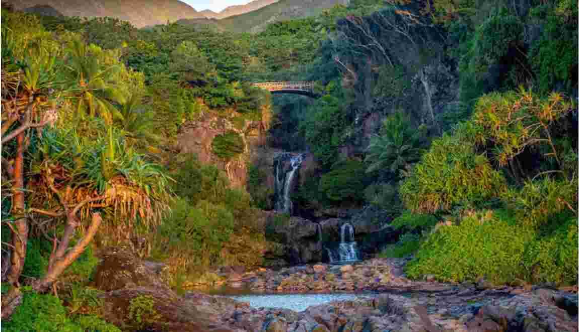 Hawaï : à la recherche de la Route du Roi