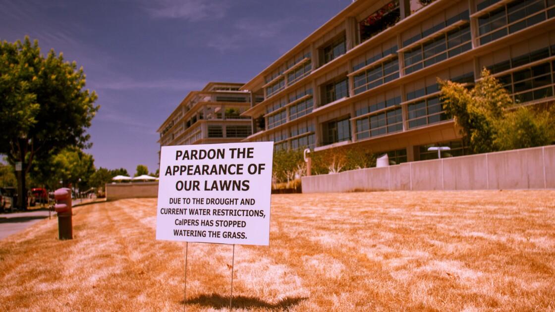 Sécheresse en Californie : le « Golden State » ne voit plus la vie en vert