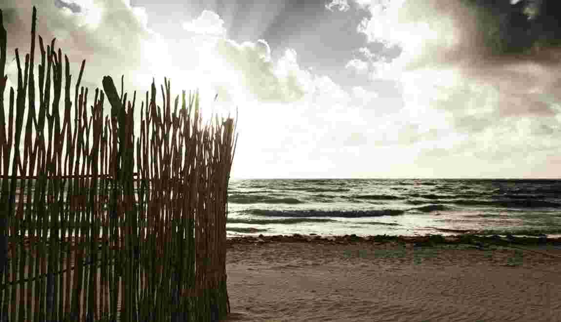 Plages et littoral : nos astuces pour les photographier