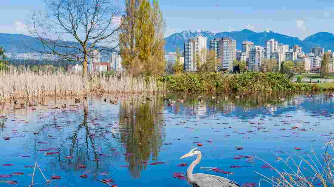 La vie en vert à Vancouver