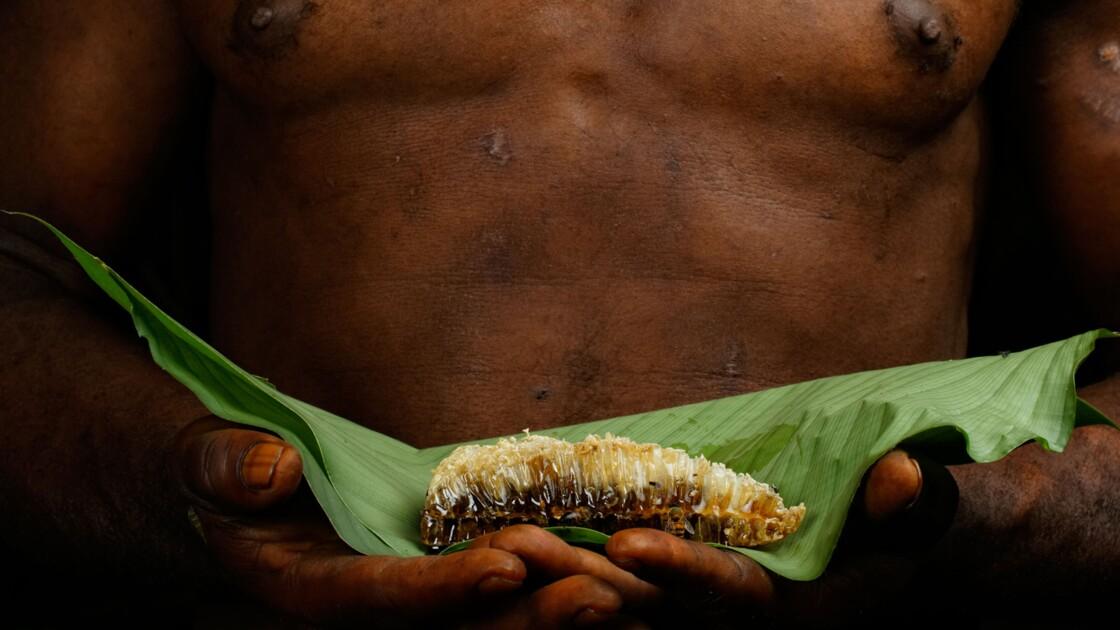 Abeilles : un patrimoine mondial en danger