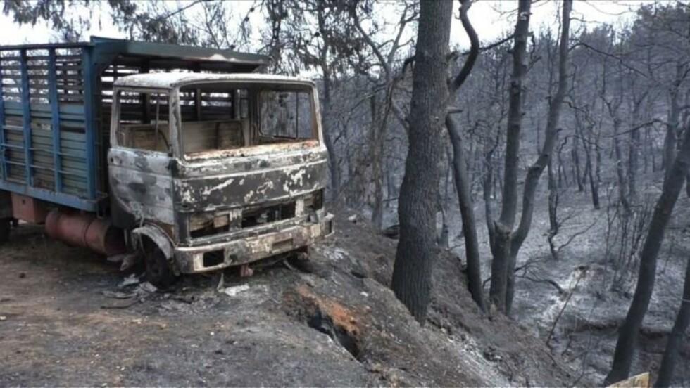 Incendies: la situation s'améliore en Grèce