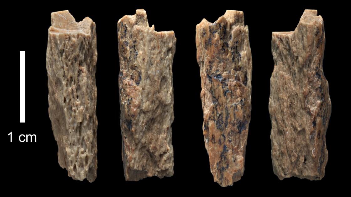 Un reste fossilisé d'enfant prouve l'accouplement entre deux espèces humaines