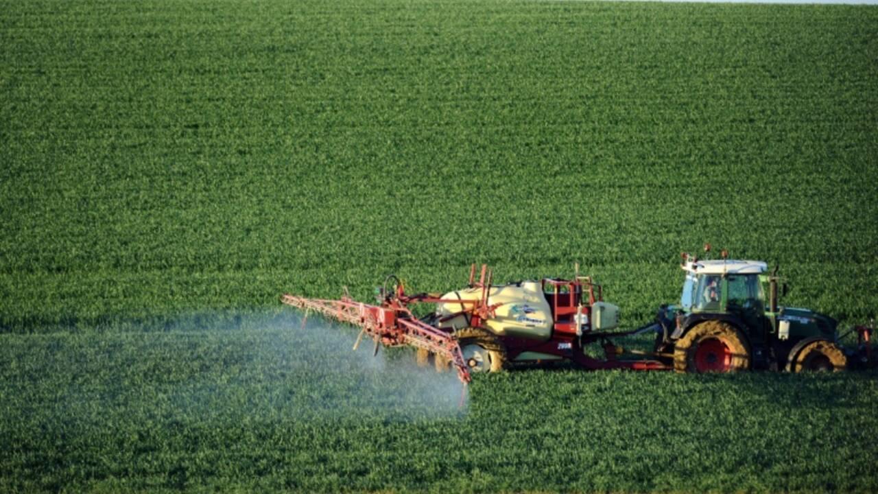 Climat: l'agriculture souhaite être une solution au réchauffement