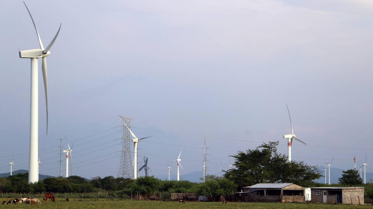 Quand des Mexicains se battent contre des moulins à vent