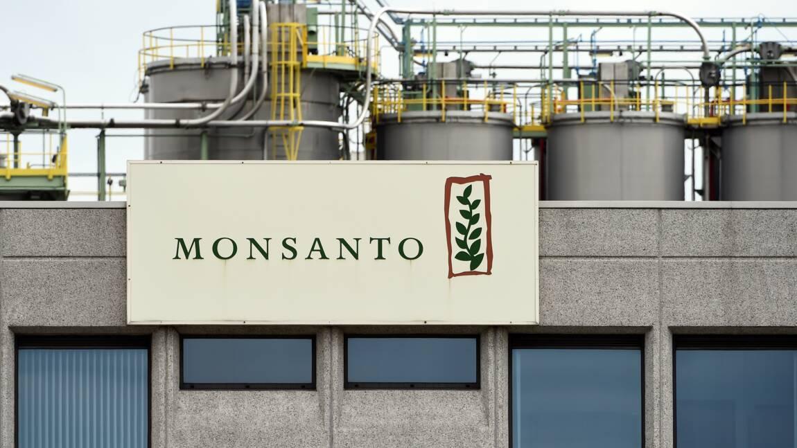 Monsanto plaide coupable d'avoir répandu un pesticide interdit à Hawaï
