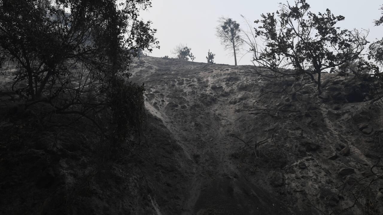 Scènes d'apocalypse près de Santa Barbara en proie aux incendies