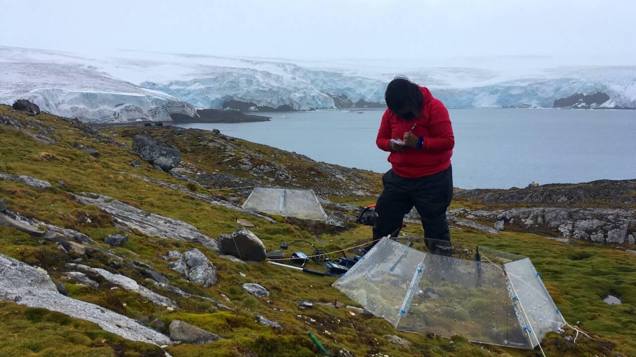 L'Antarctique, laboratoire du changement climatique