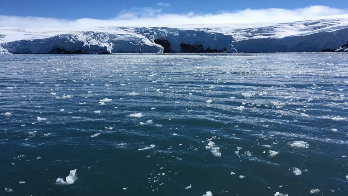 Antarctique: la banquise à un niveau très bas pour le deuxième été austral de suite