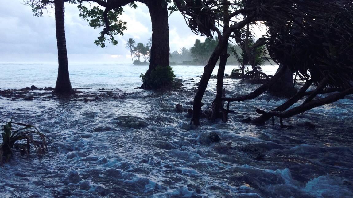 Certaines îles du Pacifique résistent au changement climatique