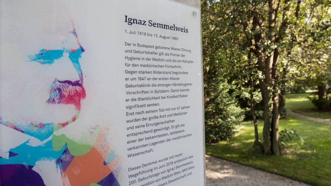 """Semmelweis, le """"génie"""" incompris qui précéda Pasteur"""