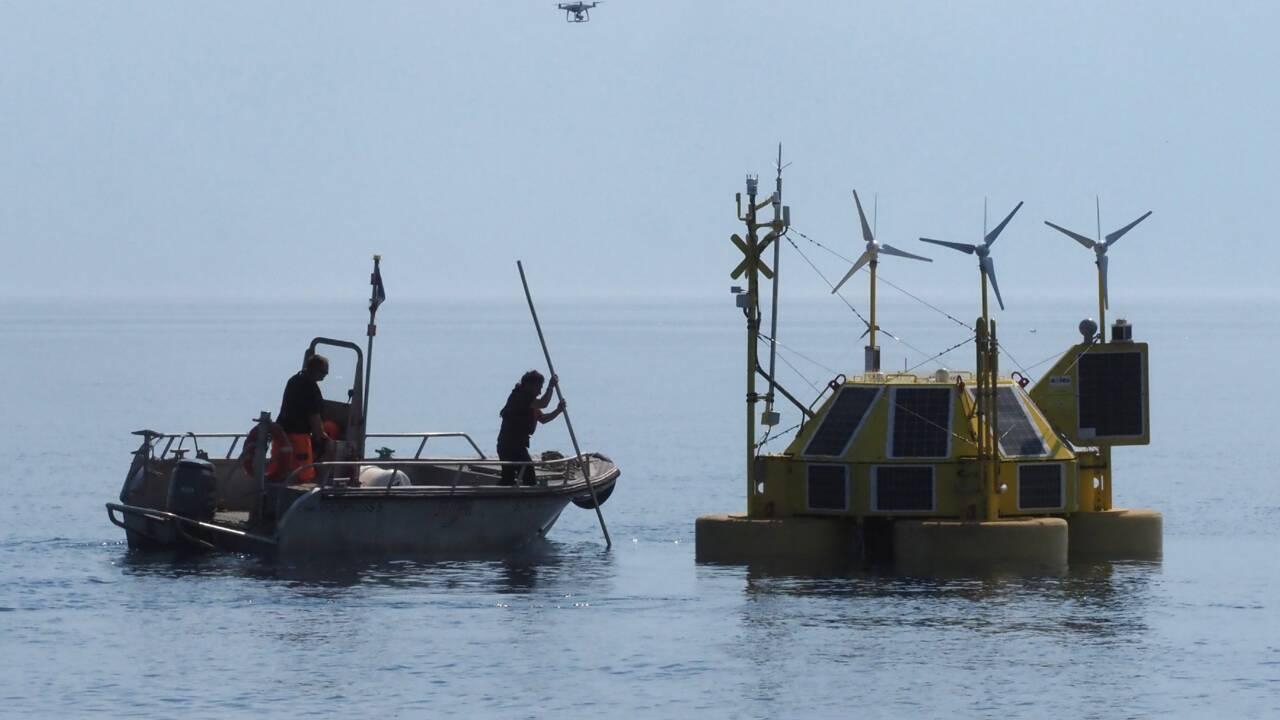 La Méditerranée, théâtre privilégié de l'expérimentation de l'éolien flottant