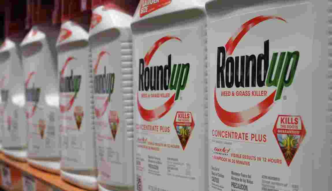 Glyphosate: le Roundup cancérigène ou pas? Un jury américain appelé à trancher