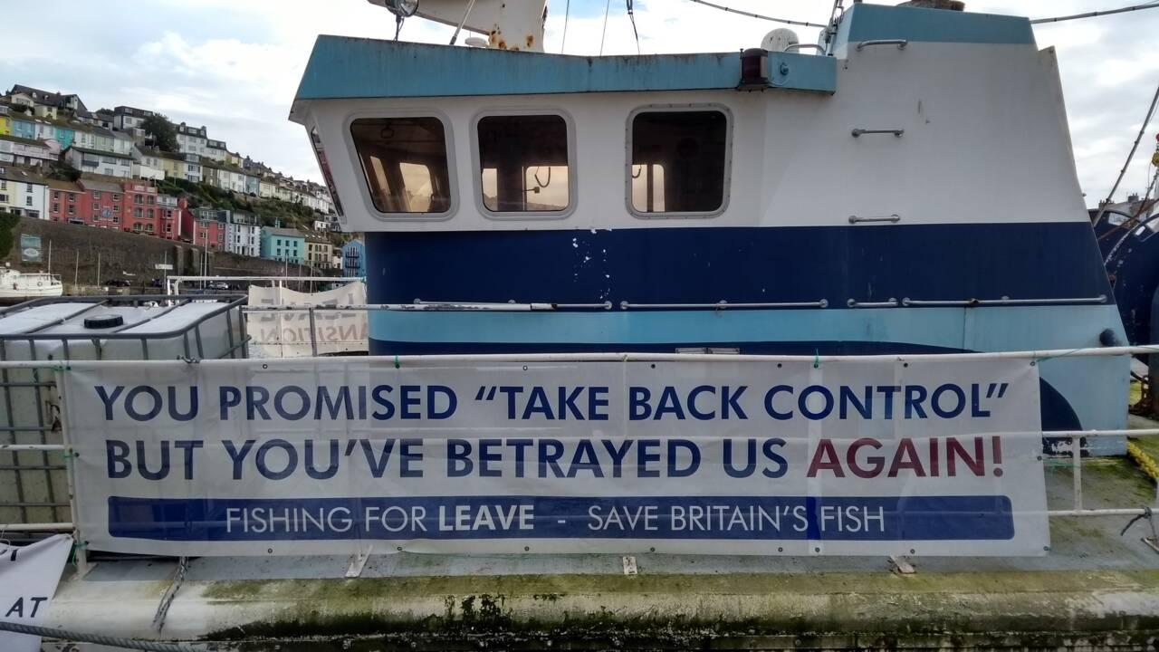 De la guerre de la coquille à la joie du Brexit, il y a un pas