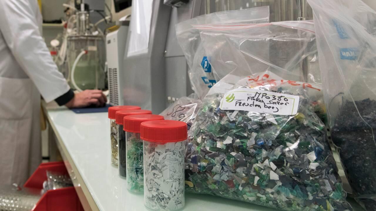 Carbios: la promesse d'un plastique recyclable à l'infini ou compostable dans son jardin