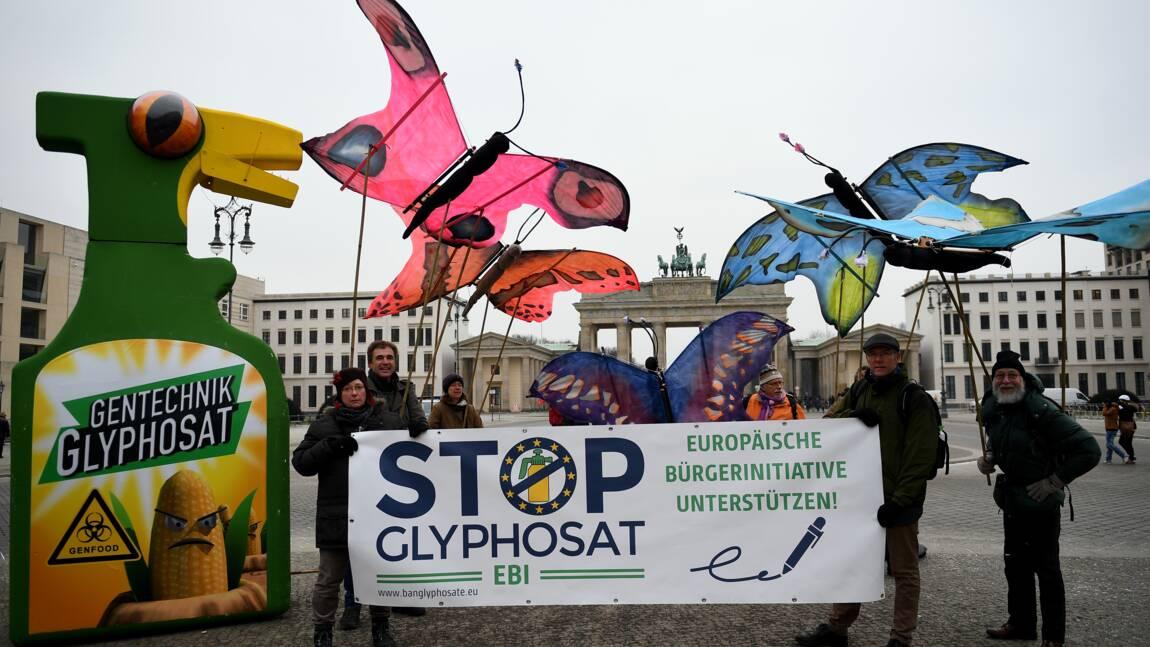 """Glyphosate: des ONG accusent les agences européennes d'évaluation """"biaisée"""""""