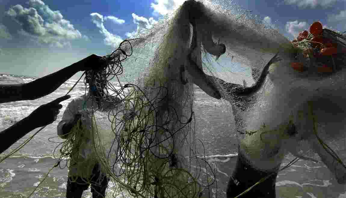 Les déchets de la pêche commerciale dans le collimateur du G7