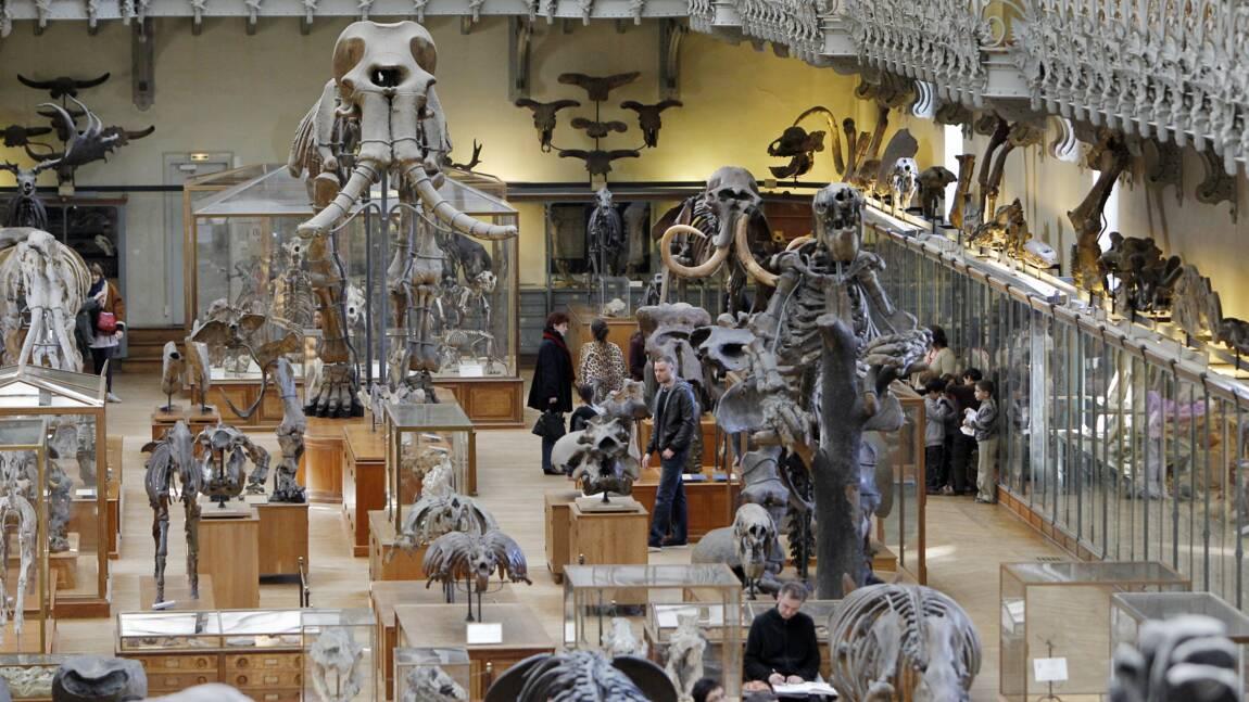 """Un Muséum national d'histoire naturelle très """"citoyen"""""""