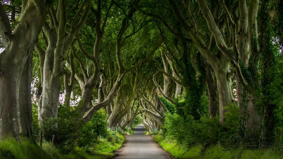 Game of Thrones : certains lieux de tournage bientôt ouverts au public