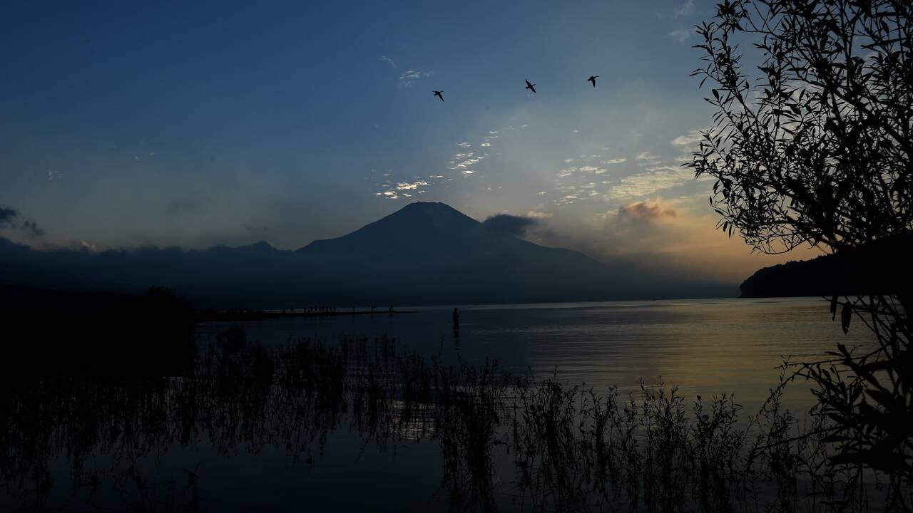 Les zones humides disparaissent trois fois plus vite que les forêts