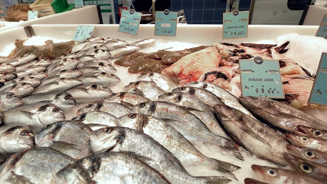"""Les consommateurs de poisson n'ont pas encore le réflexe """"durabilité"""""""