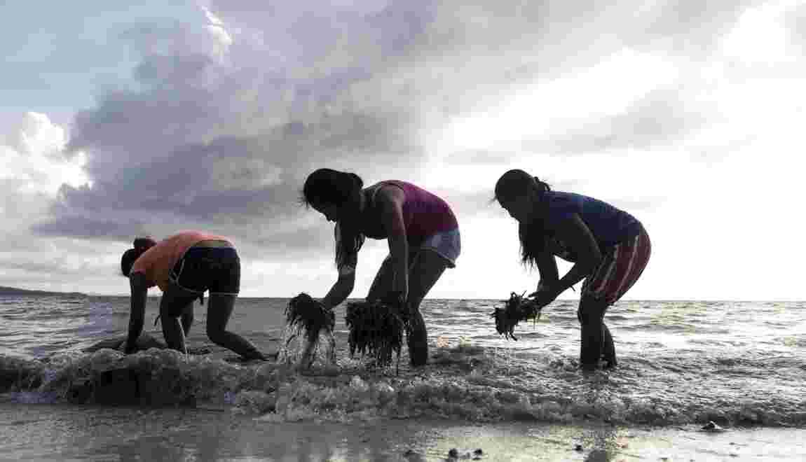 Philippines : la fête est finie à Boracay, île paradisiaque souillée