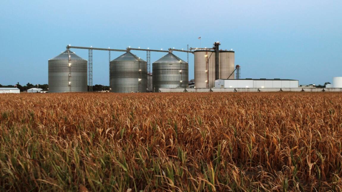 Pour apaiser les agriculteurs, Trump étend l'utilisation d'éthanol