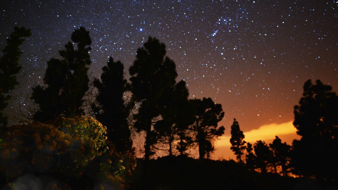 Canaries : La Palma, spot idéal pour observer les étoiles