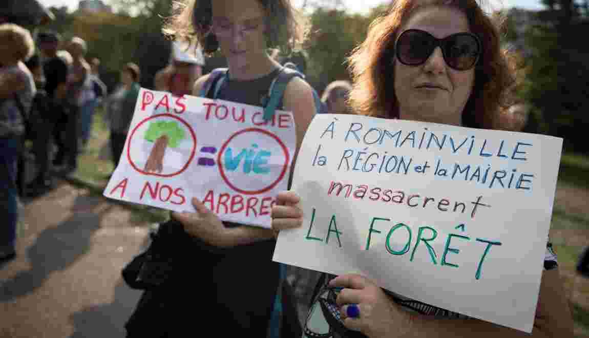 """Rassemblement près de Paris pour """"stopper"""" le défrichage d'une vaste forêt urbaine"""