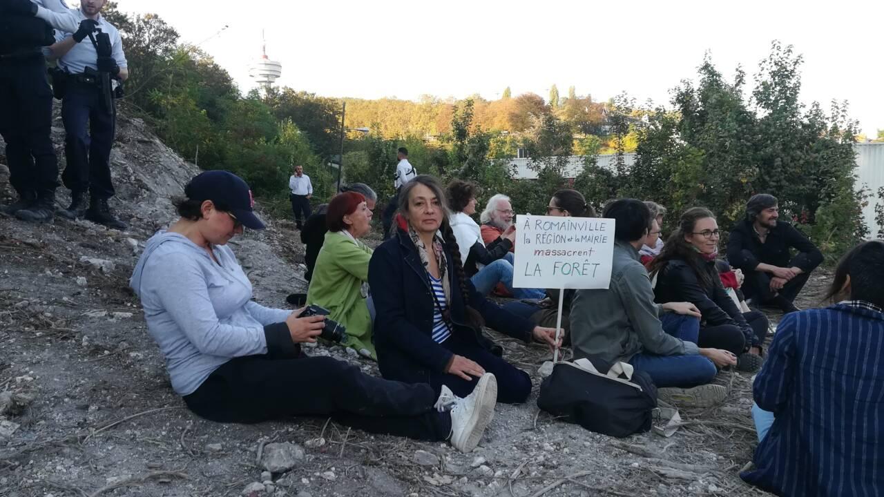 """Près de Paris, un sit-in avec Catherine Ringer pour """"stopper"""" le défrichage d'une vaste forêt"""