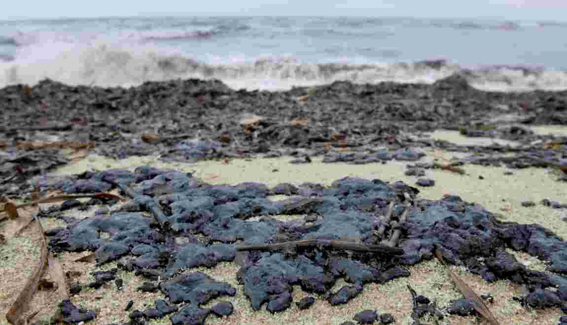 Boulettes de pétrole à Saint-Tropez : des filets déployés en mer