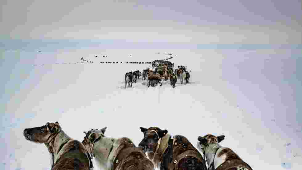 Arctique : Russie, Canada, Alaska… On a fait le tour du Grand Nord
