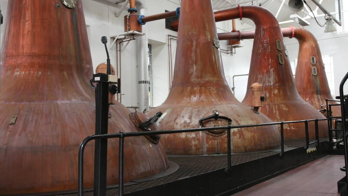Whisky : dans les secrets des alambics écossais