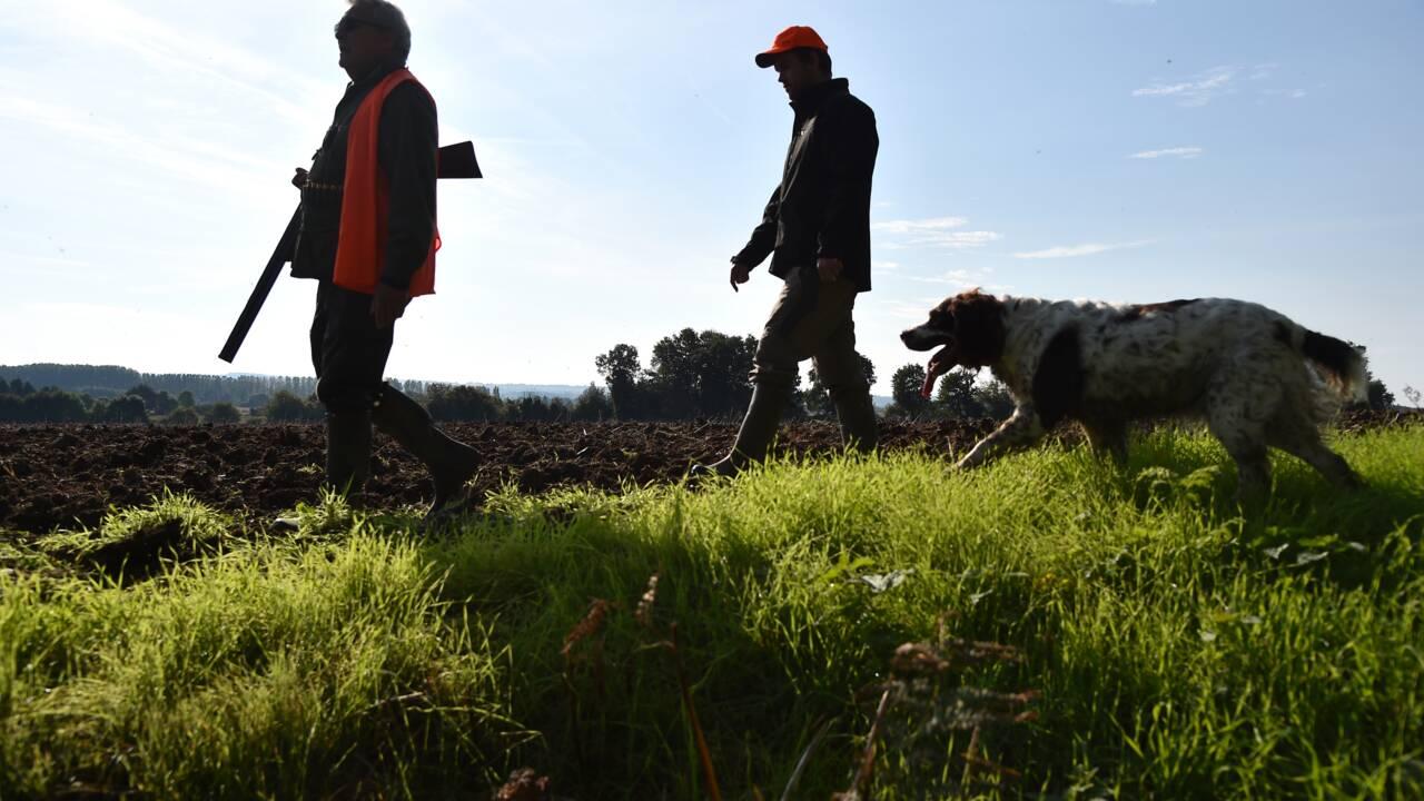 """Fondations et associations lancent un appel pour """"dénoncer les excès"""" de la chasse"""