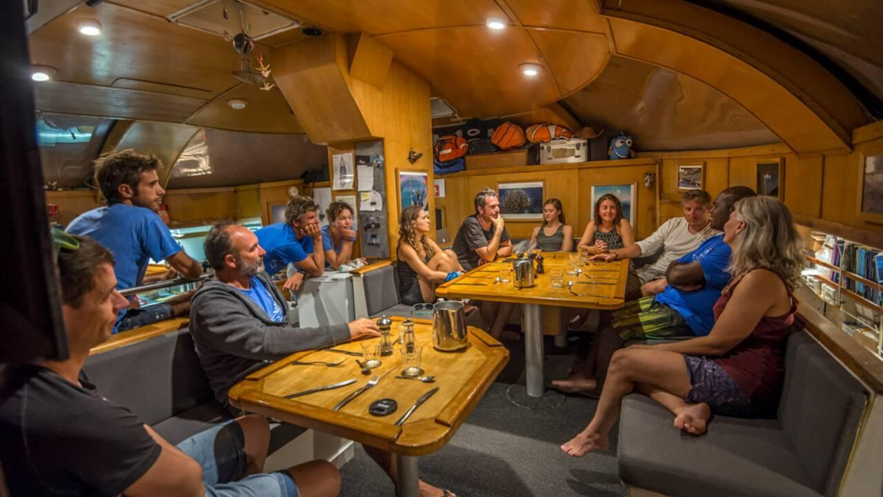 On a embarqué à bord du Tara pour percer les mystères du corail