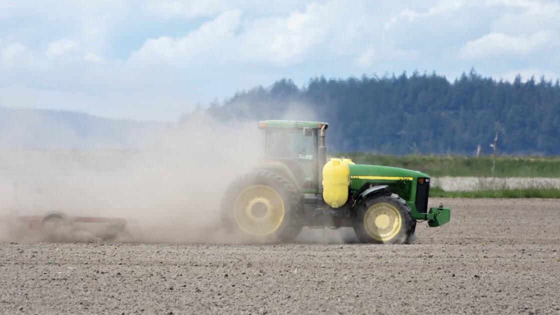 OGM : qu'est-ce qu'un organisme génétiquement modifié ?