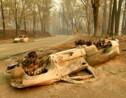 Pas d'accalmie sur le front des incendies en Californie