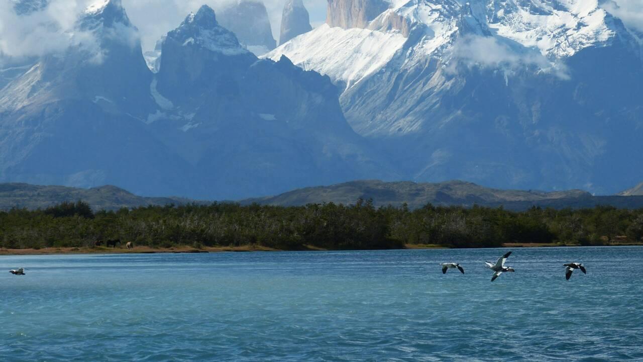 Nos bons plans en Patagonie chilienne et argentine