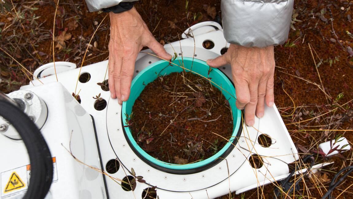 Depuis une tourbière québécoise, le premier bilan carbone des barrages