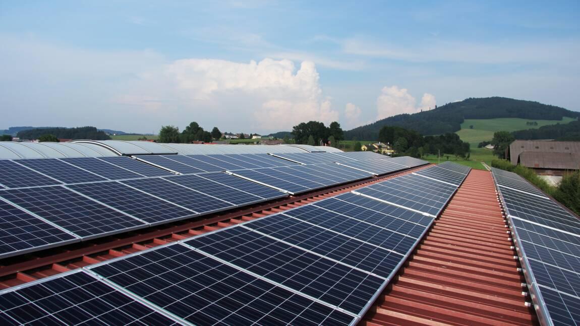 Panneaux solaires : comment produisent-ils de l'énergie ?