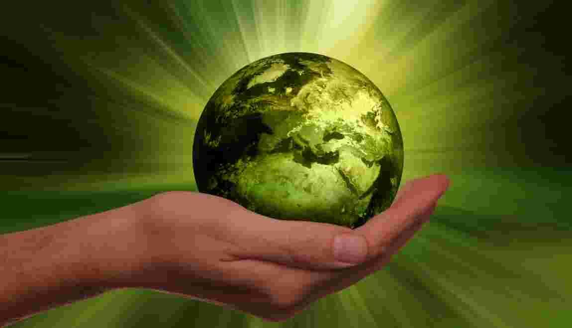 Ecologie ce qu 39 il faut savoir sur cette discipline scientifique - Maison de l ecologie ...