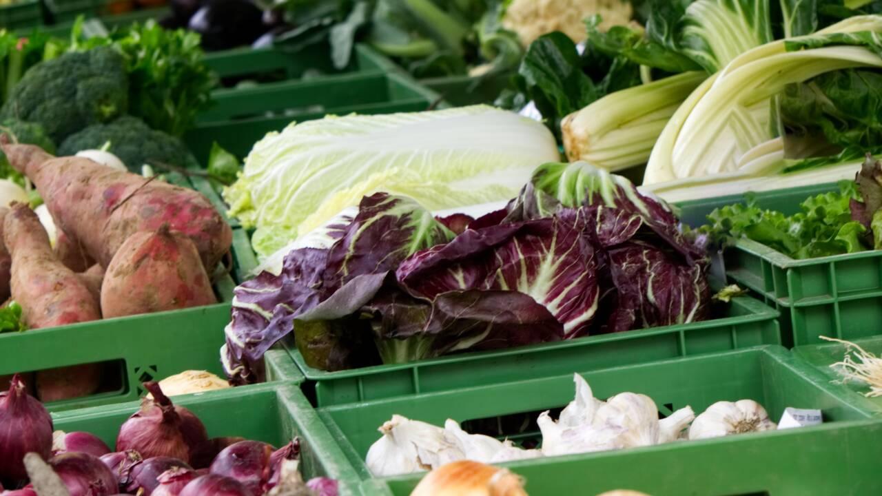 Agriculture biologique : ses grands principes